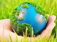 Экологическая безопасность: основные тенденции и проблемы