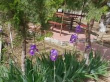 Работы по благоустройству на факультете №4 Академии МВД Республики Таджикистан